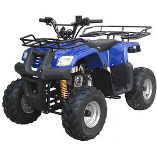 ATV Parts | Parts for ATV | China ATV Quad Parts | Chinese